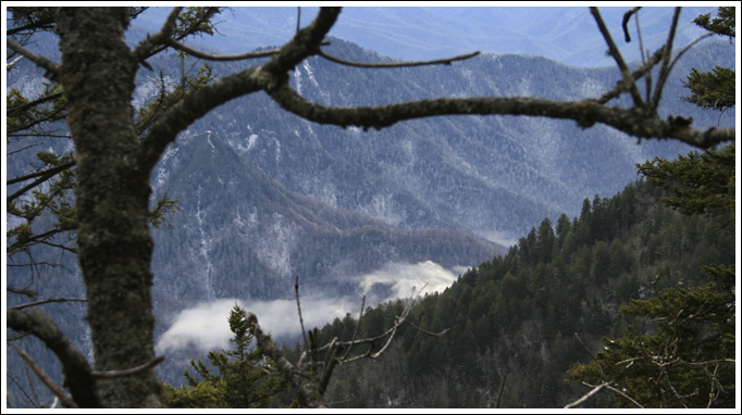 Mount LeConte Photography - Tennessee