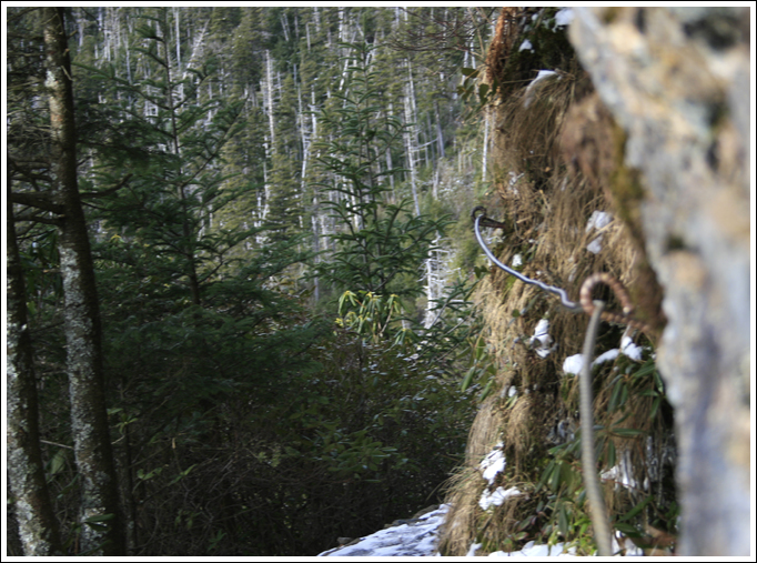 mt-leconte-tn-photography_hiking-photographer_102