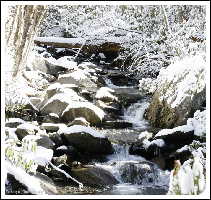 Mount LeConte Photography - Great Smokey Mountains National Park - Tennessee